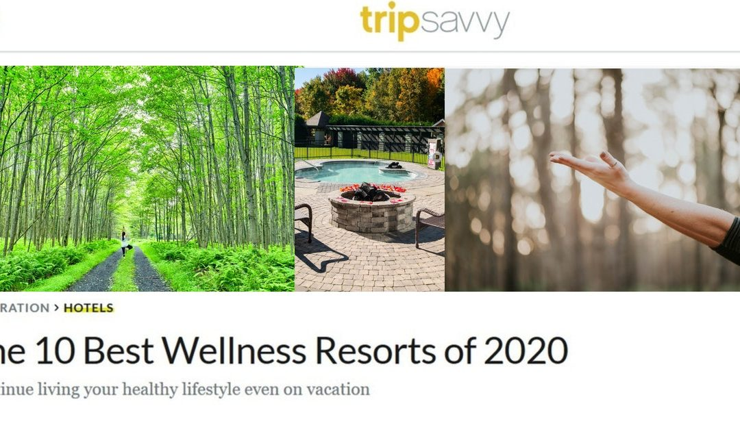 The 10 Best Wellness Resorts of 2020 on TripSavvy